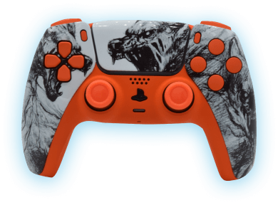 Design One of a Kind Controller